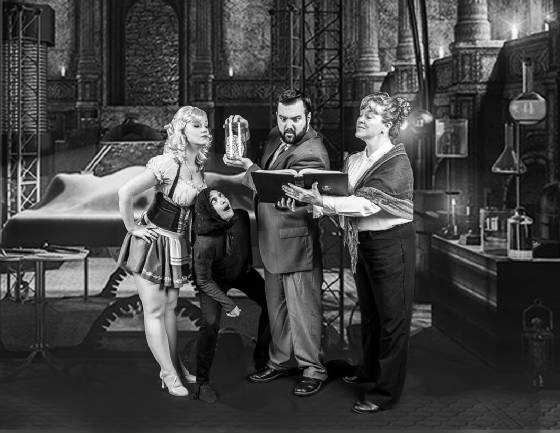 young_frankenstein_the_lab_web_size.jpg